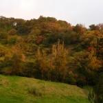 Coucher du soleil sur Monteverde