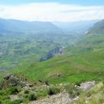 Canyon del Colca - culture en terrasse