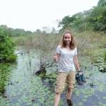 Pantanal - Marécage