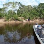 Pantanal - Baignade au milieu des piranhas