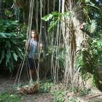 Rio - Jardim Botanico