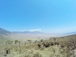 Serengeti.