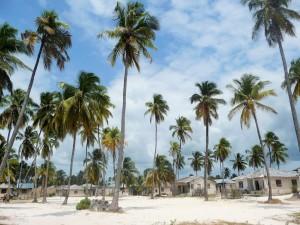 Zanzibar - Village
