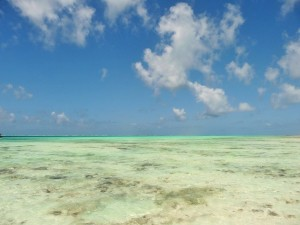 Zanzibar - marée  basse