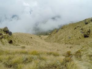 Trek Mardi Himal