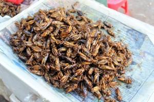 Rangoun - Criquets frits