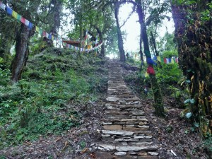 Trek Mardi Himal - Temple