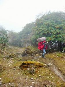 Trek Mardi Himal - Porteur