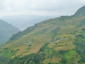 Trek Mardi Himal - Sidhing