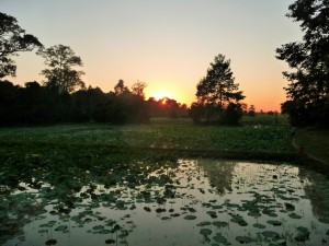 Angkor - Coucher du soleil