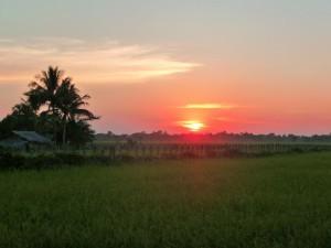 Angkor - Dernier soir