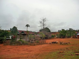 Village Phnong