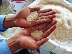 Battambang - Lequel est le sticky rice?