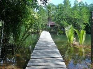 Koh Kood - Vers le campement