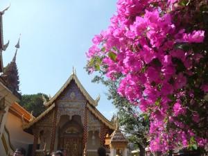 Chiang Mai - Wat Phra Doi Suthep