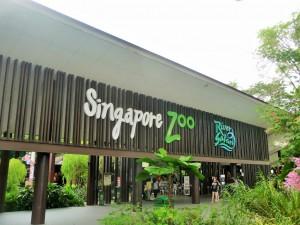 Zoo et River Safari