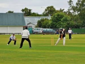 Palmerston North - Cricket