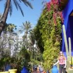 Jardins de Majorelle3