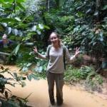 Jungle - Parc de la Lékédi