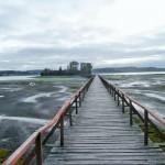 Quemchi - Passerelle vers un îlot
