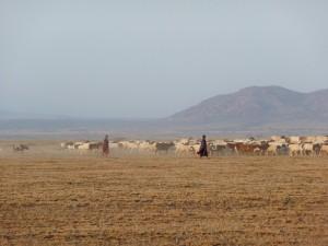 Serengeti - Maasaï