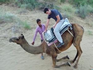 Safari à chameaux