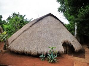 Village Phnong - Maison traditionnelle