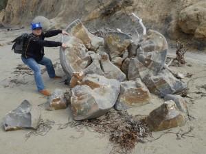 Côte Est - Boulders Beach