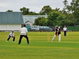 Palmerston North - Cricket